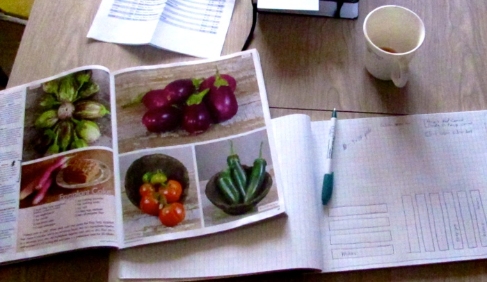 Seed Catalogues and Planning for our First Garden in Five Years.